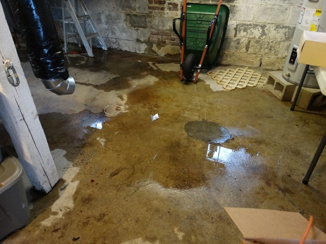 My basement is becoming dry. Yeah!