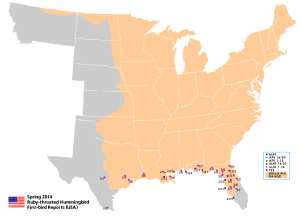 Updated hummingbird migration map.
