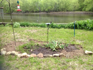 Newly created hummingbird garden.