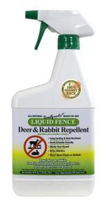 DeerRabbit32oz
