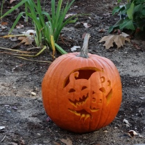 Brandy's pumpkin!