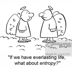 'If we have everlasting life, what about entropy?'