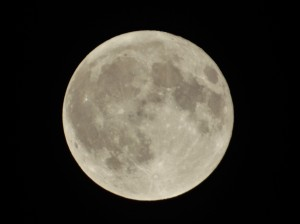 harvest moon-full moon-september moon-supermoon