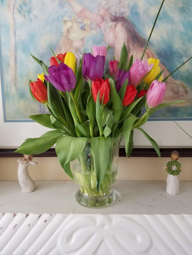 tulips-flowers-spring