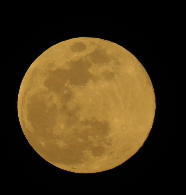 rare super worm moon - full moon - 2019