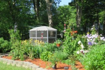 gardens - flowers - rivers - perennials