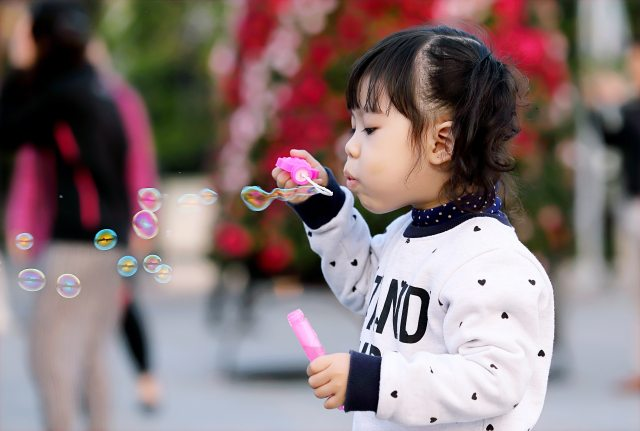 adorable-blowing-blurred-background-712141