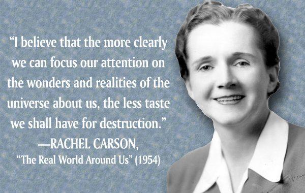 Rachel-Carson-quote-600x380